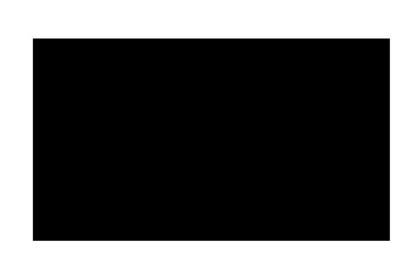 falsy logo